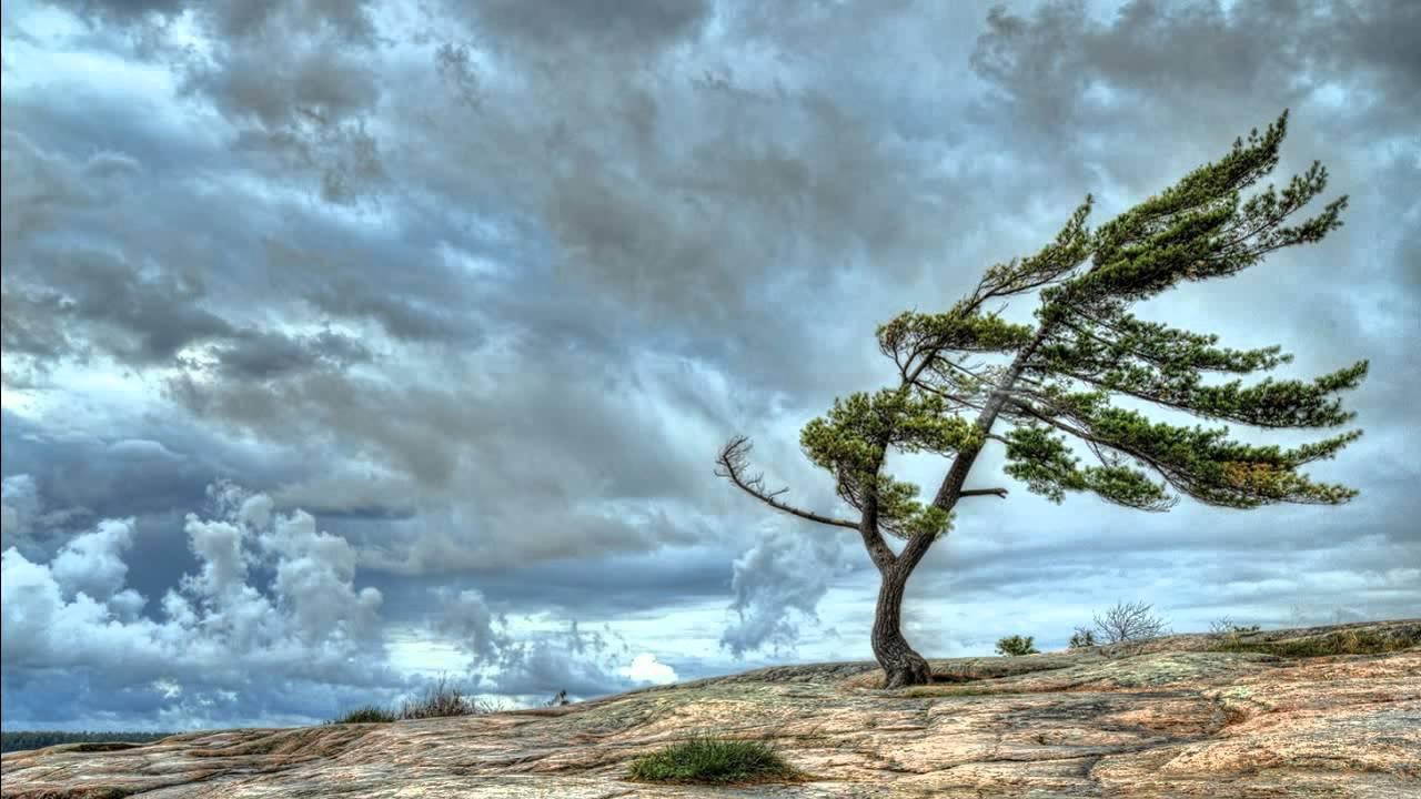 soffio-vento
